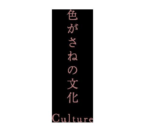色がさねの文化